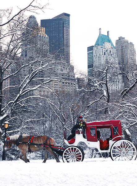 Central Park Horse Carriage New York Holiday Card Photo © konstantino hatzisarros 2013
