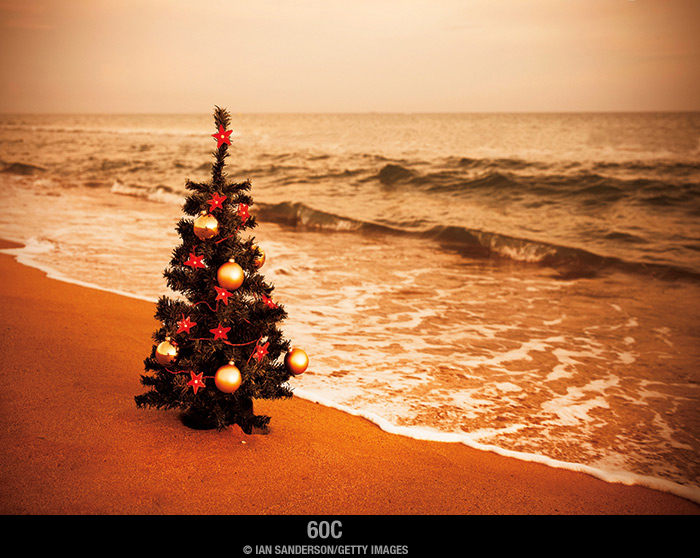 ChristmasTree-on-the-Beach-Holiday-Card