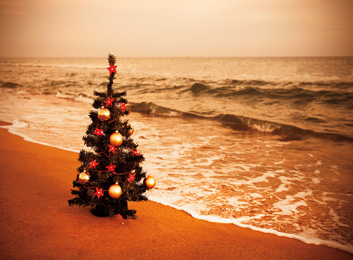 Christmas Tree on the Beach Holiday Card Photo © Ian Sanderson/Getty Images