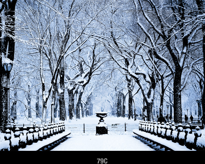 central_park_in_snow_Christmas_Holiday_card