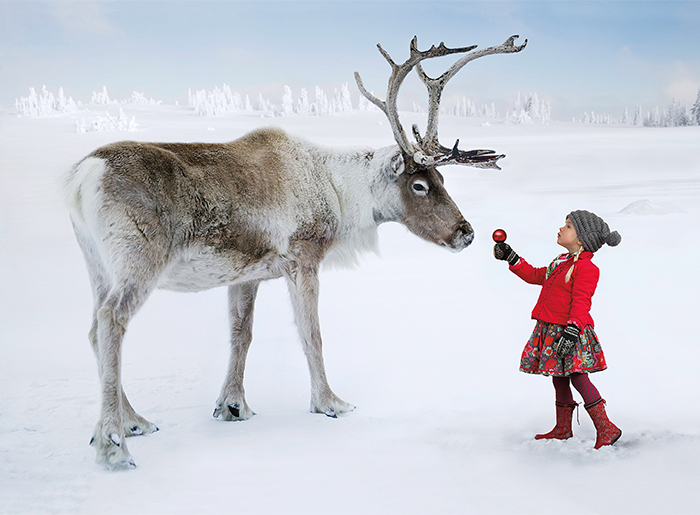 Reindeer and Little Girl Holiday Card